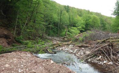 Usvojena Deklaracija o zaštiti rijeka u Srpskoj